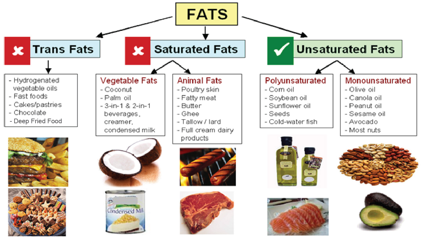 All About Fat Nhg Pharmacy